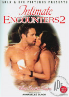 Intimate Encounters 2 Porn Movie