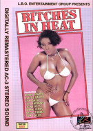 Bitches In Heat Vol. 8 Porn Movie